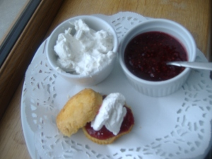 Allergy free scone with jam and dairy free cream