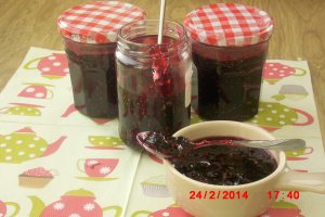 allergy free summer fruit jam